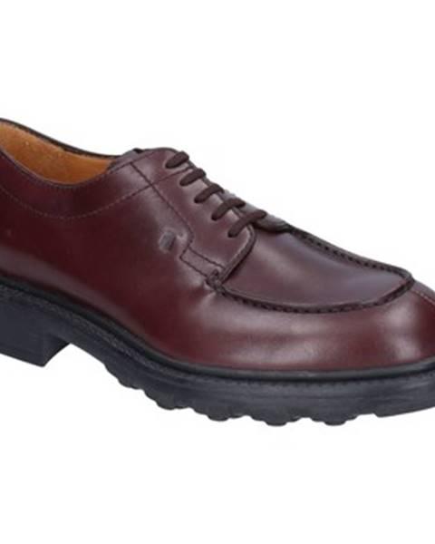 Bordové topánky Tod's