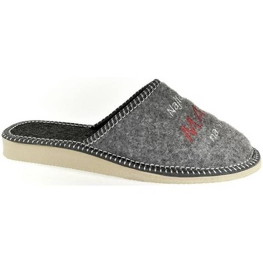 John-C Papuče  Dámske sivé papuče NAJ MAMA