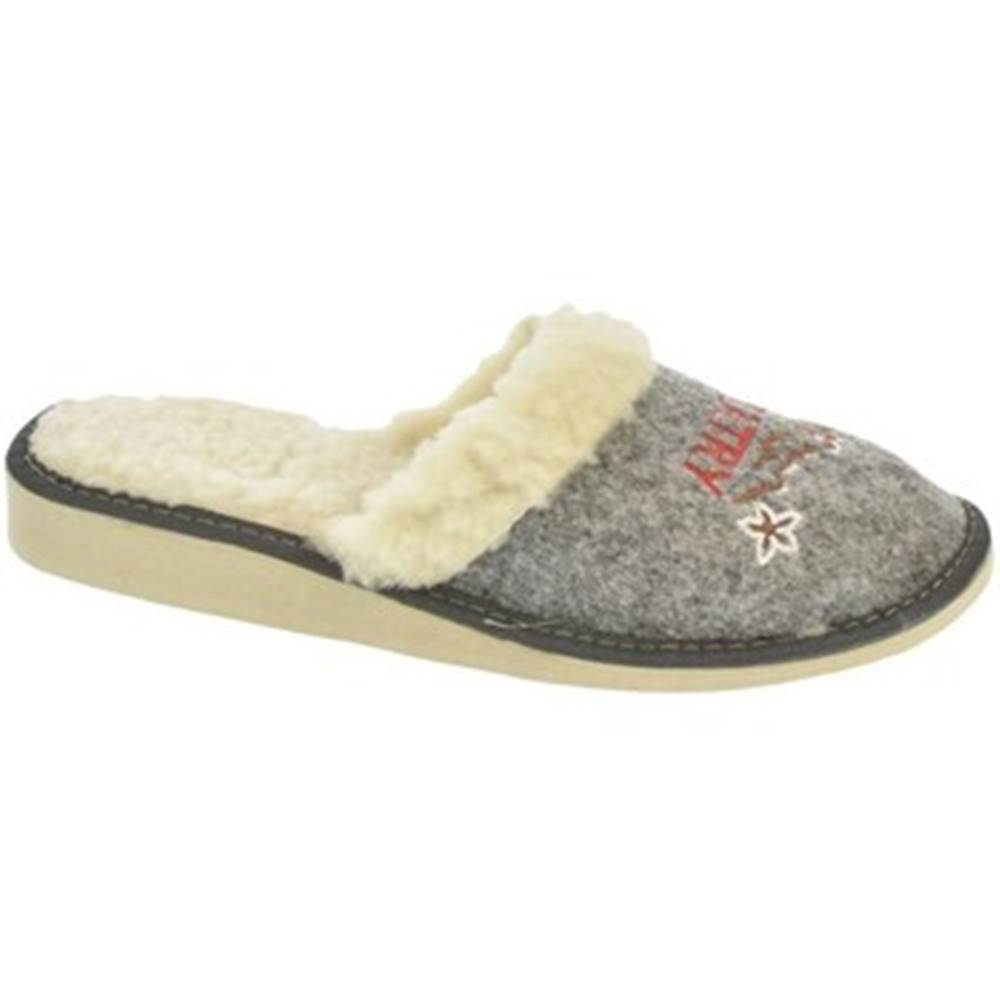 John-C Papuče  Dámske sivé papuče TATRY