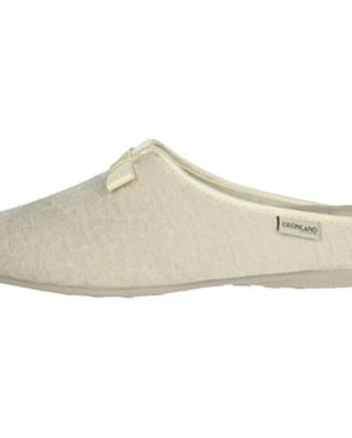Papuče  CI1669-47