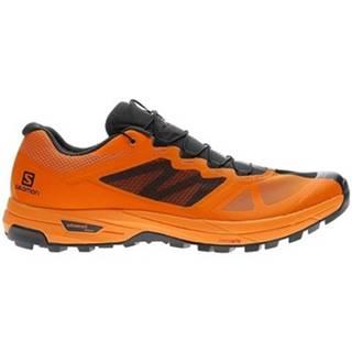 Bežecká a trailová obuv Salomon  X Alpine Pro