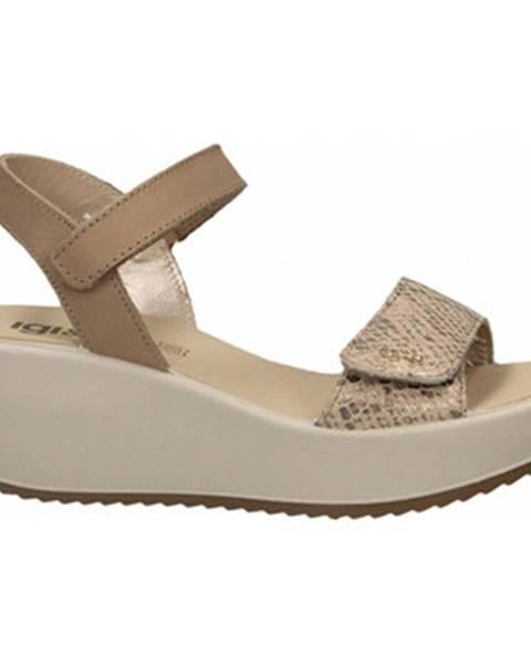 Zlaté topánky IGI CO