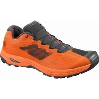 Turistická obuv Salomon  X Alpinepro