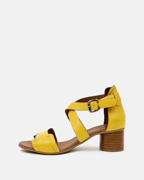 Žlté topánky wild